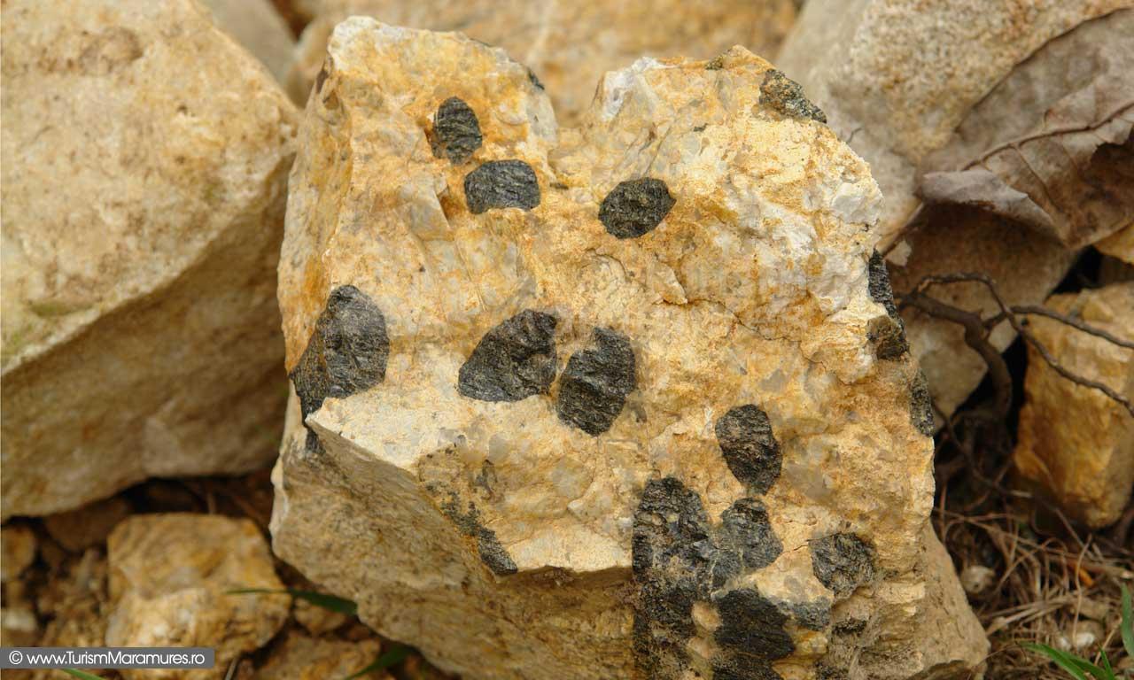 26_Cristale-uriase-in-dolomite-de-Preluca-Veche