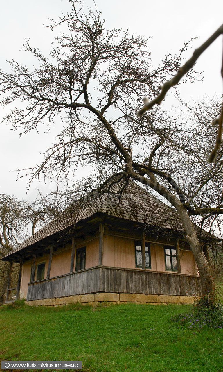 10_Casa-Groape-Tara-Lapusului