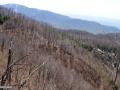 27-Eresu-Mare-Drumul-lui-Maurer-Mogosa.jpg