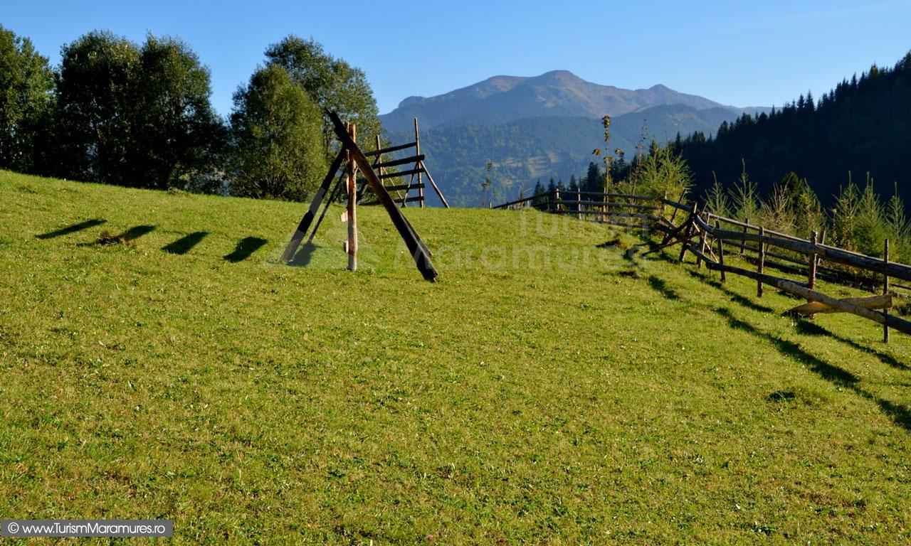 15_Cearcanu-Parcul-Natural-Muntii-Maramuresului