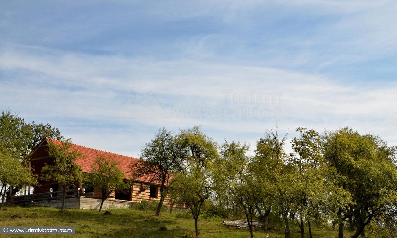 43_Casa-Elvetianului