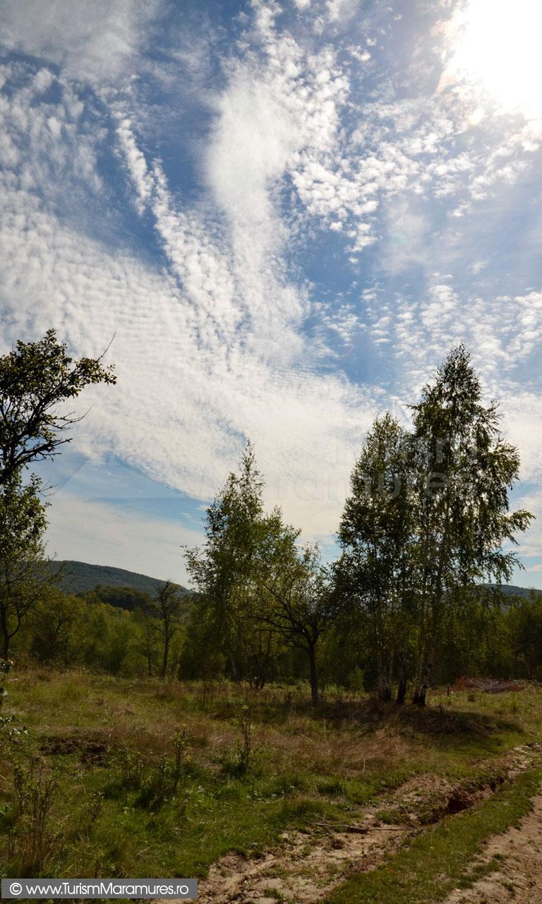 78_Sahelbe--Dambu-Hutii