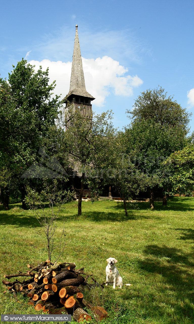 47_Biserica-Francenii-Boiului-usa