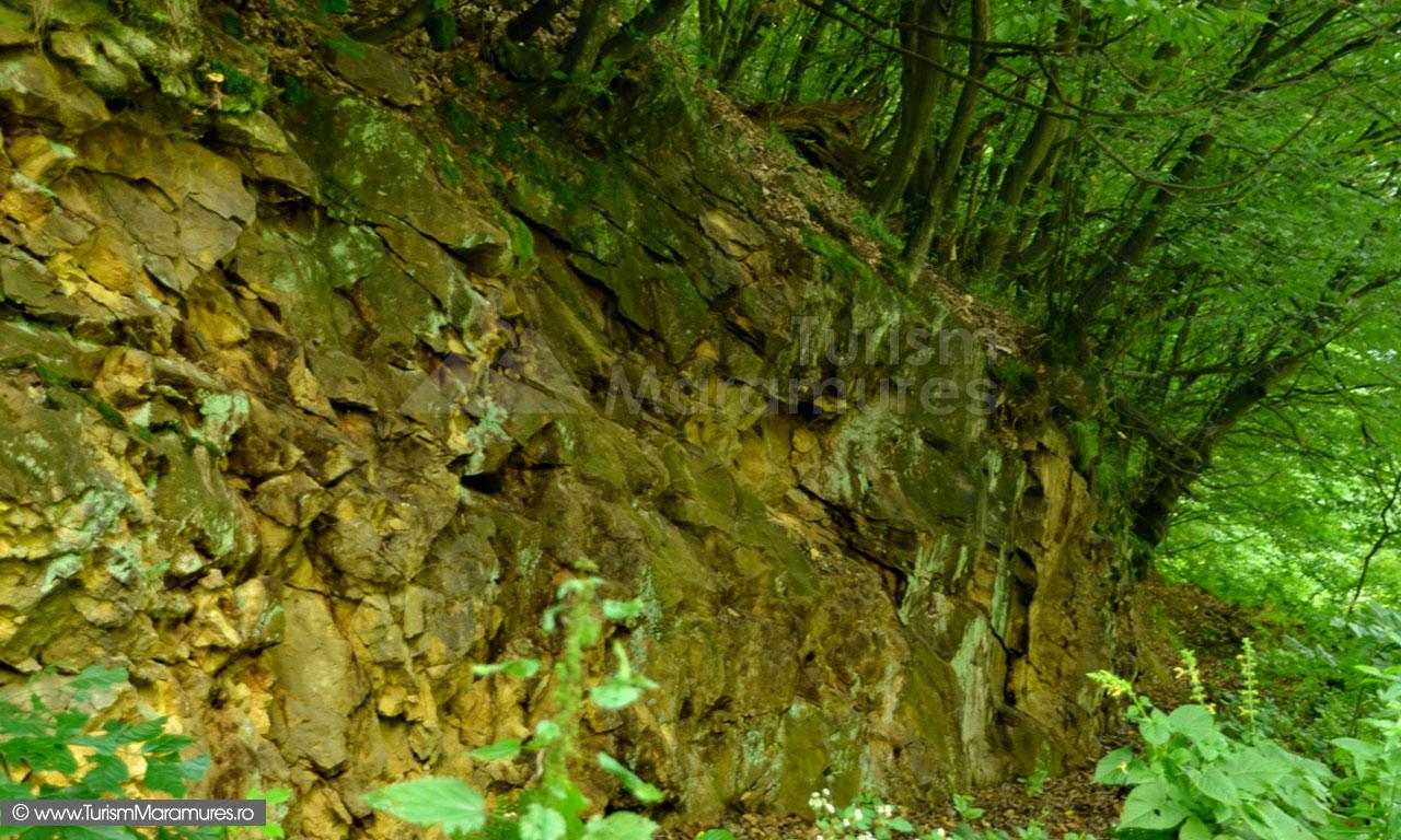 07_Roci-vulcanice-tectonizate