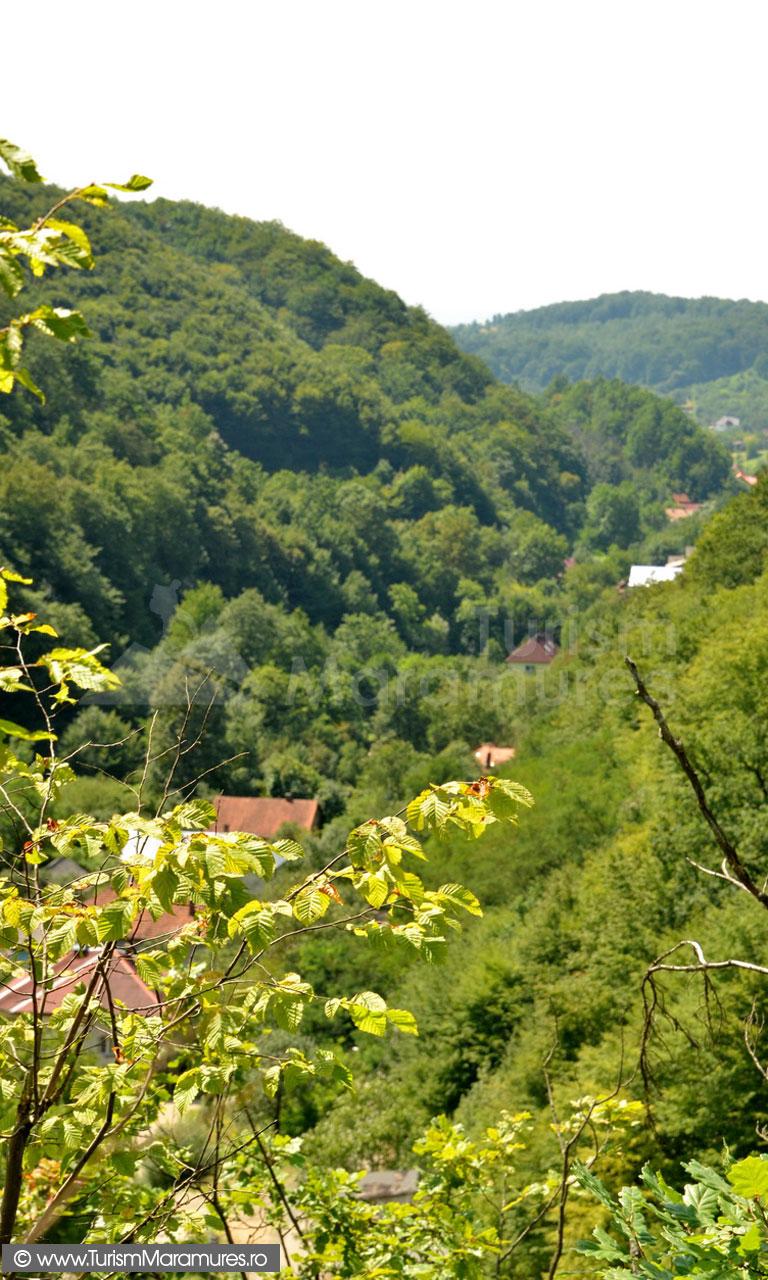 62_Valea-Borcutului-in-zona-fostei-Colonii-Miniere