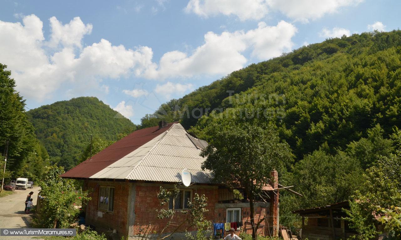 64_Valea-Toncii-sau-valea-Neamtului