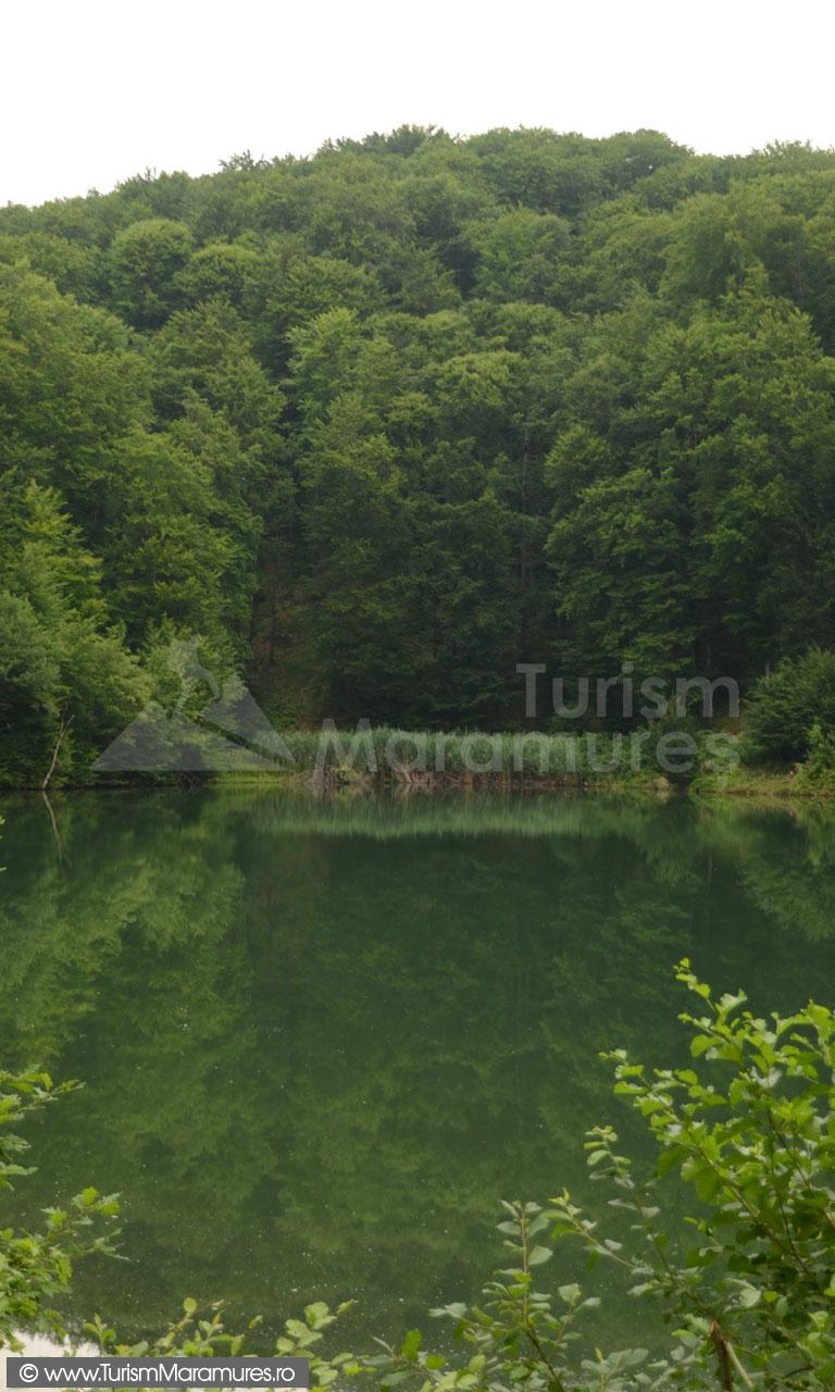 Lacul-Bodi-Ferneziu_005
