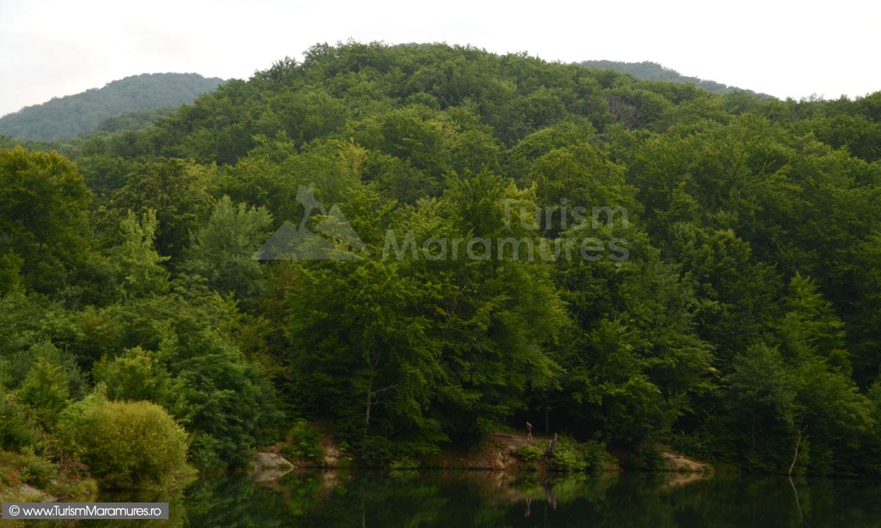 Lacul-Bodi-Ferneziu_007