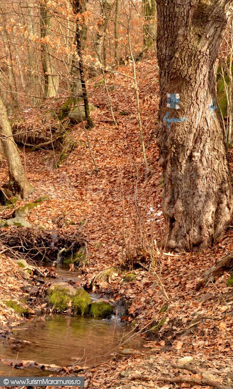 Marcaj cruce albastra pentru circuit Pula Calului