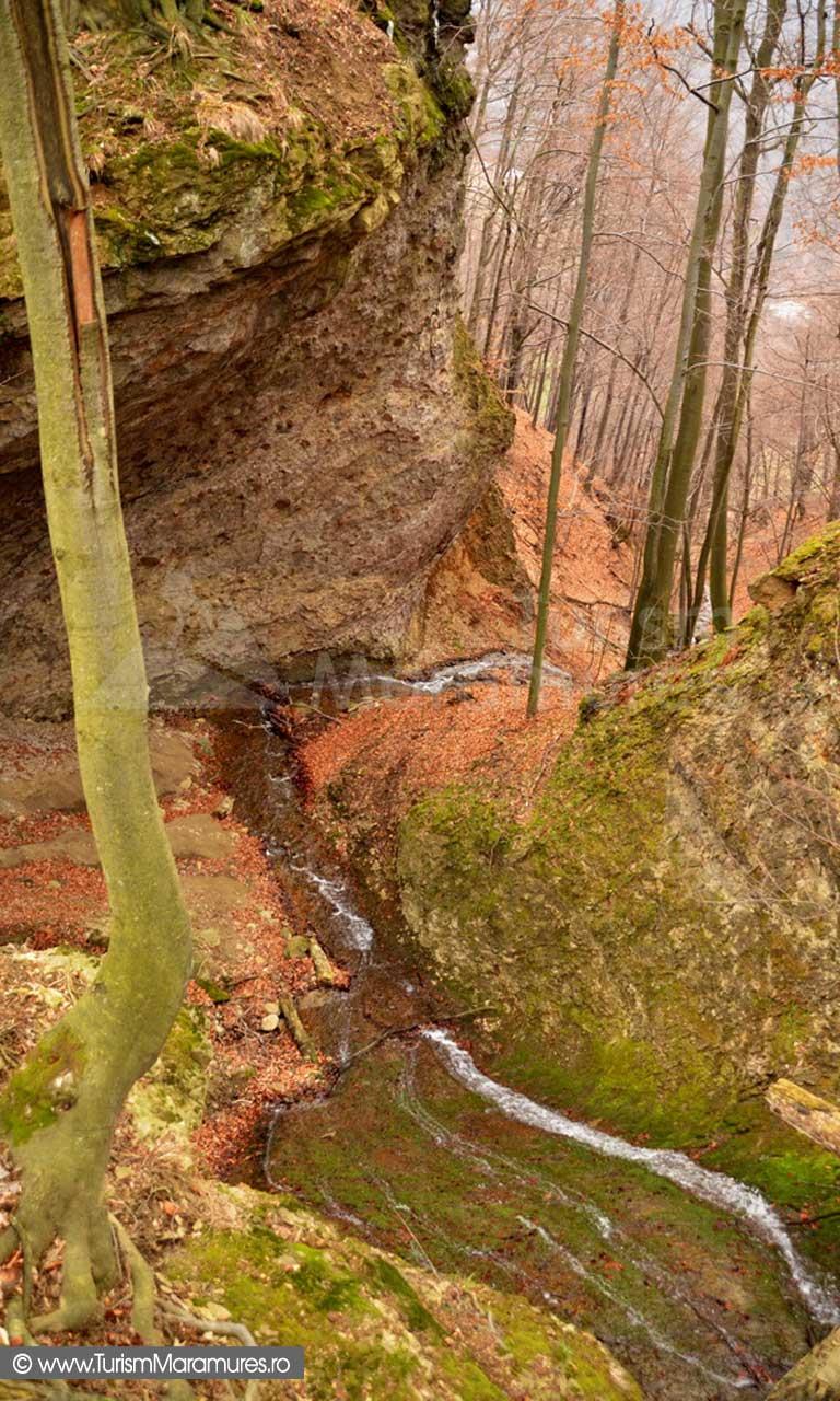 Canionul valea Secaturii_00