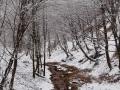 03-Valea-Neamtului