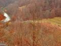 104-Dambu-Pulii-raul-Lapus-Ochiul-Gropitei-in-aval