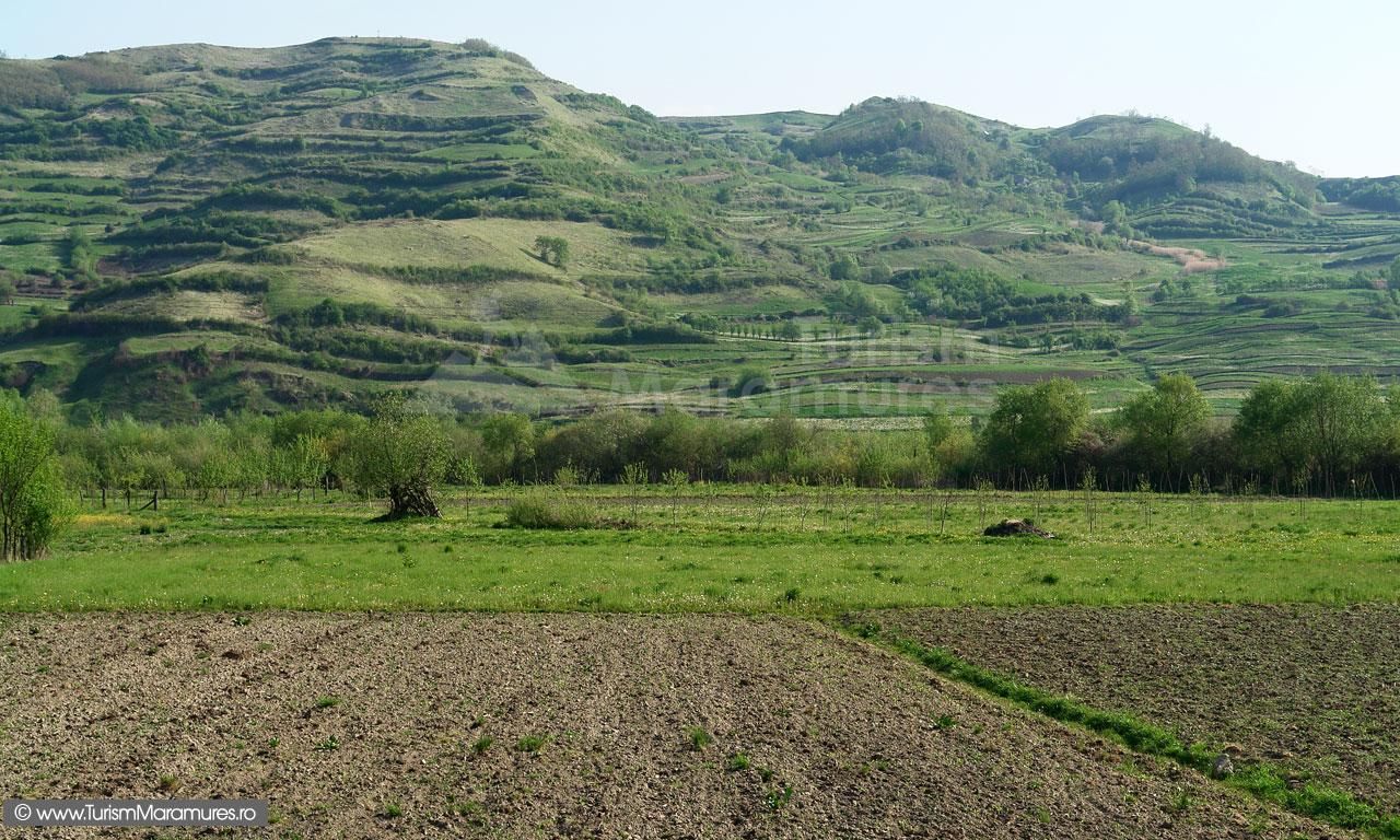 15_Maramuresul-Istoric_Terase-pe-Valea-Izei