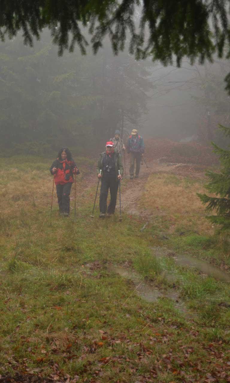 Excursionisti