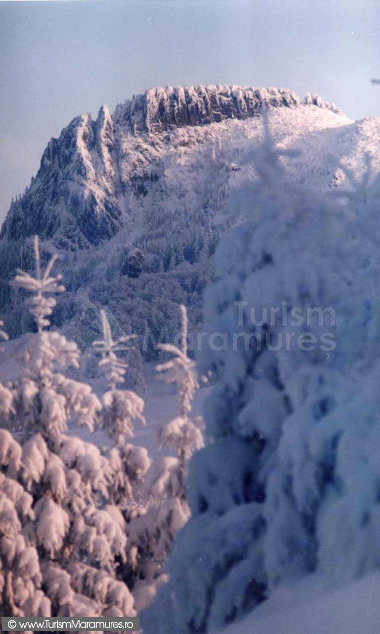 Creasta-Cocosului-iarna