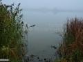 08-Pescaria-Arinis-Maramures