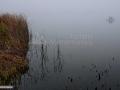 20-Pescaria-Arinis-Maramures