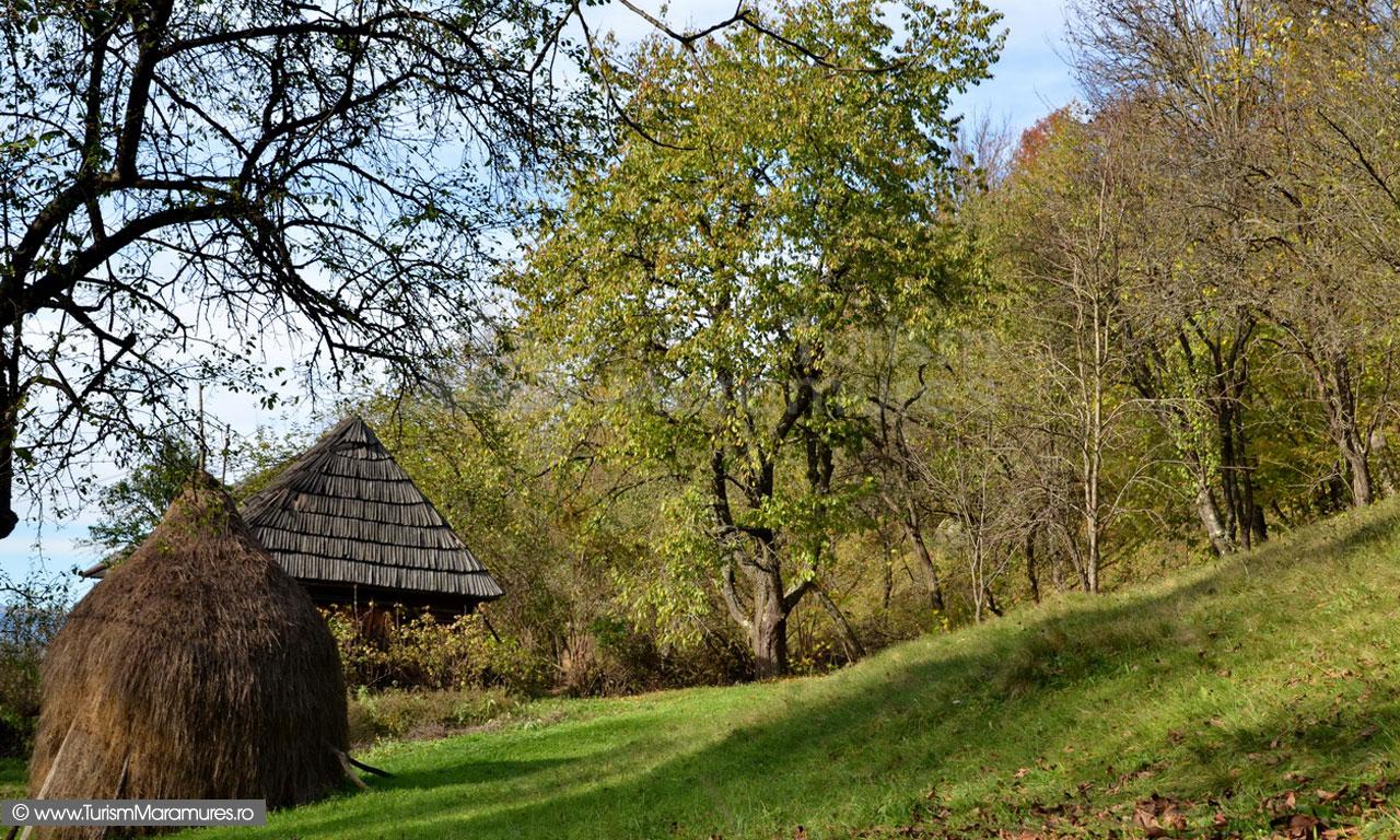 115_Gospodarie-traditionala-Budesti-Maramures