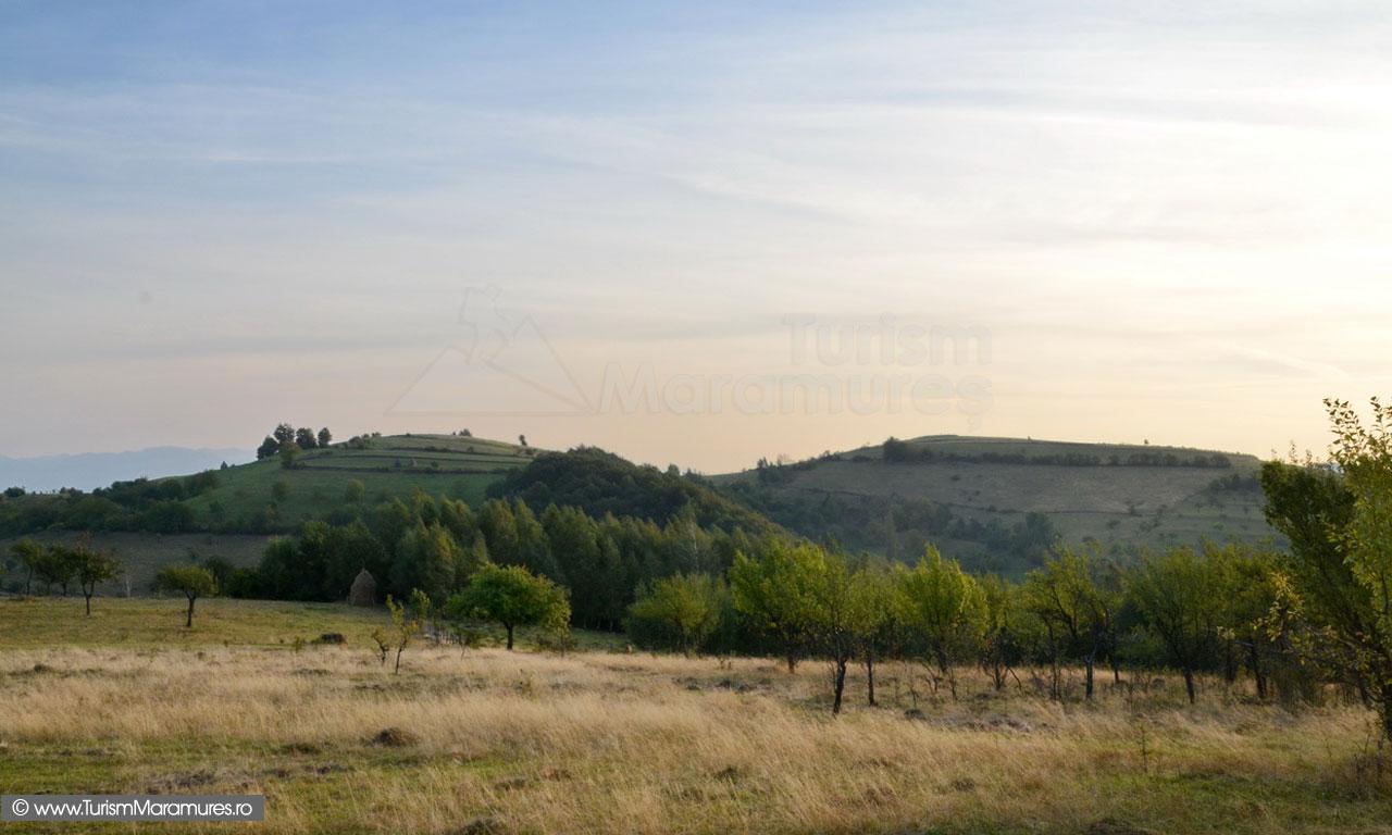 22_Dealul-cel-Mare_dealul-Mosinoiu