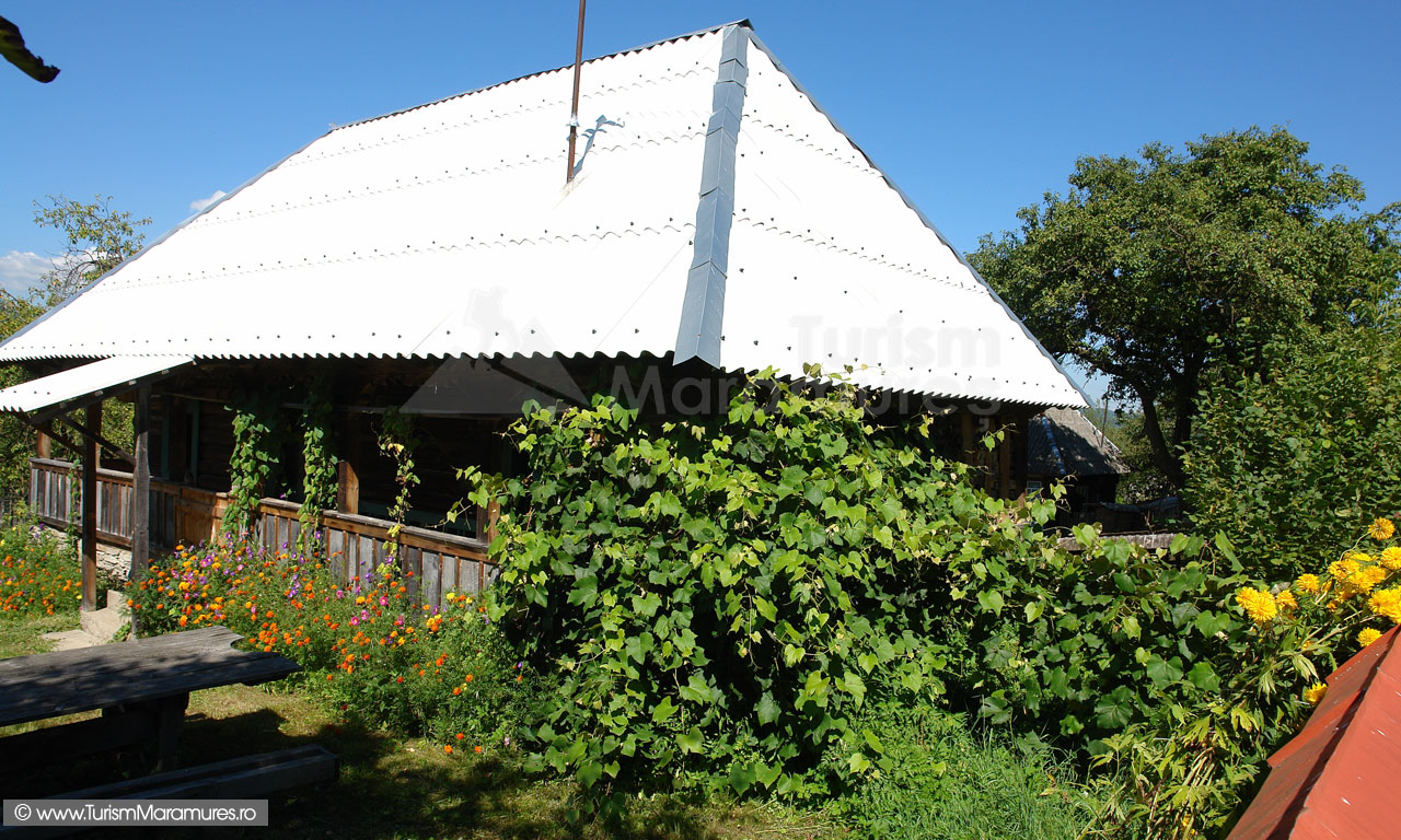 29_Casa-din-Hoteni