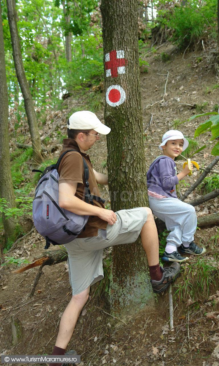 04_Marcaje-turistice-spre-Lacul-Albastru