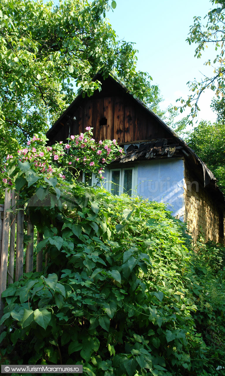 22_Casa-miniereasca-din-Baia-Sprie