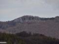 29-Scutu-Mare-Gutai.jpg