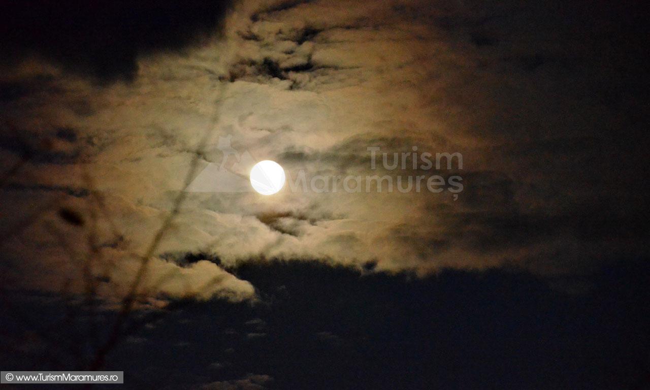 01_Apus-de-luna