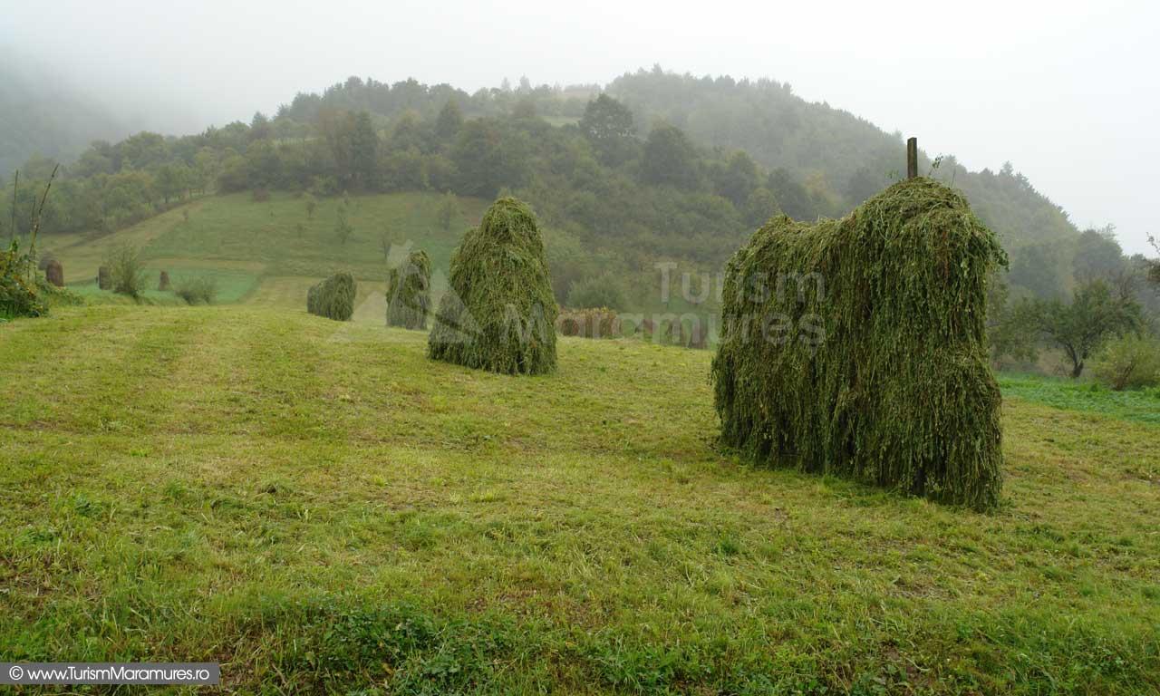 10_Jirezi-cu-lucerna-Botiza-Maramures