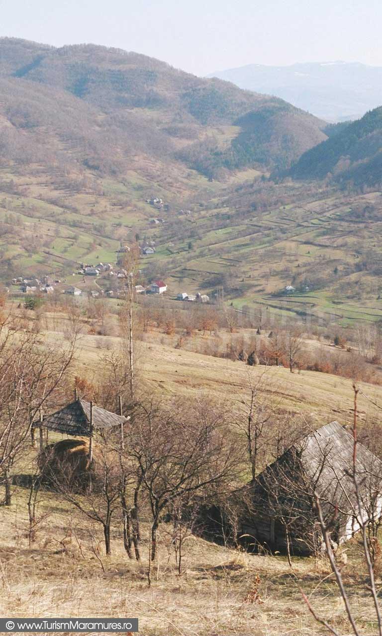 Valea-Stejarului-Maramures_