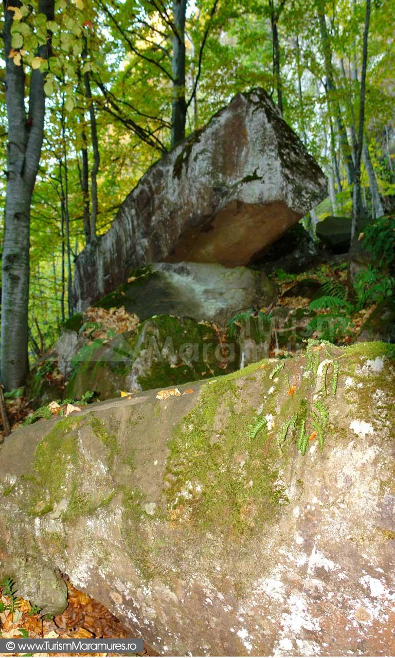 Sub Cascada Ciuroiului