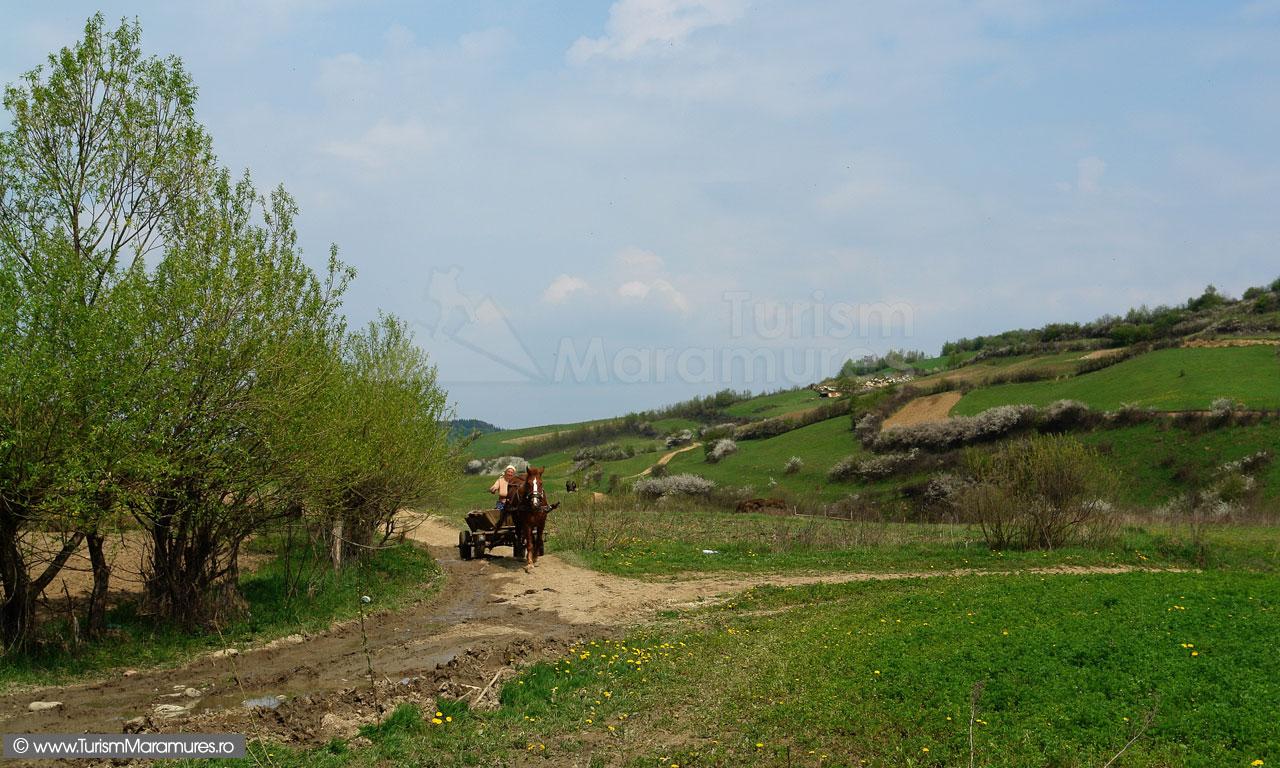 51_Rogoz-Maramures