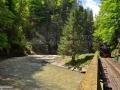 48-Mocanita-Valea-Vaserului-pod-aval-Paltinu