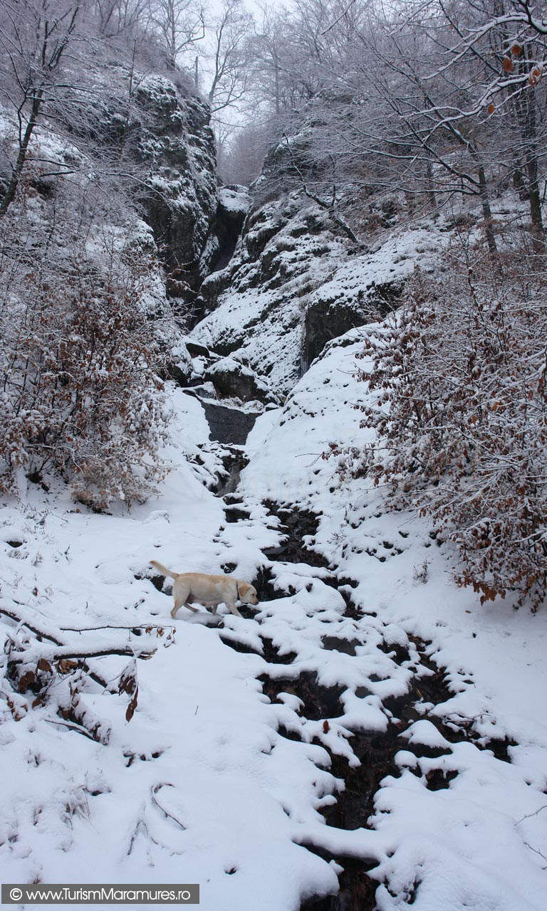 12-Cascada-iarna