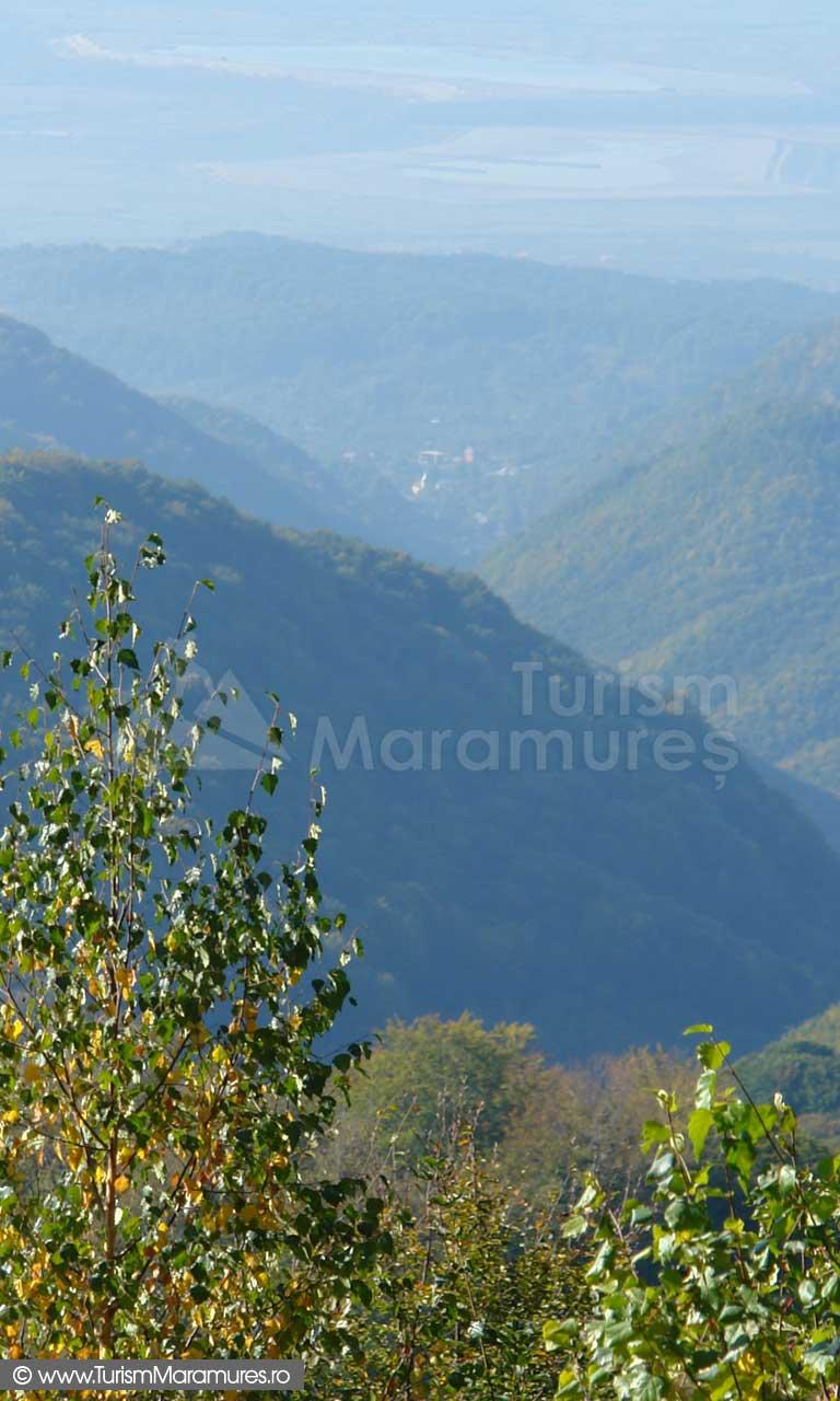 Panorama spre Valea Borcutului