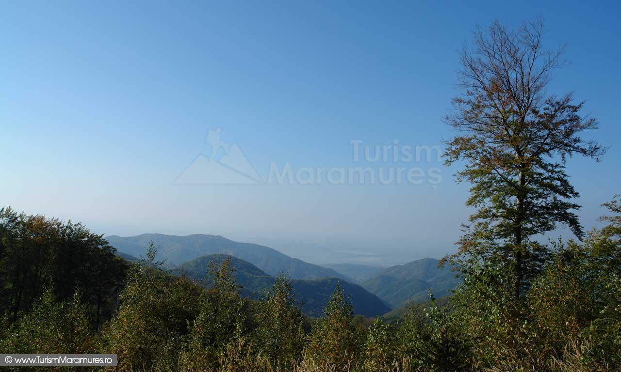 Panorama spre decantorul de steril Bozanta Mica
