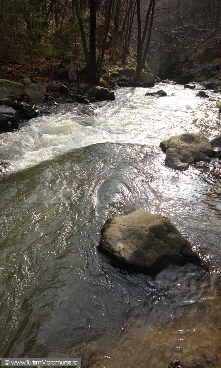 Valea-Paltinu-Maramures