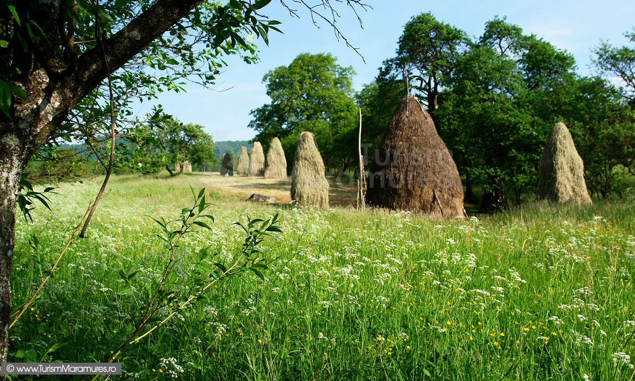 10_Claie-si-clenceri-in-Maramures