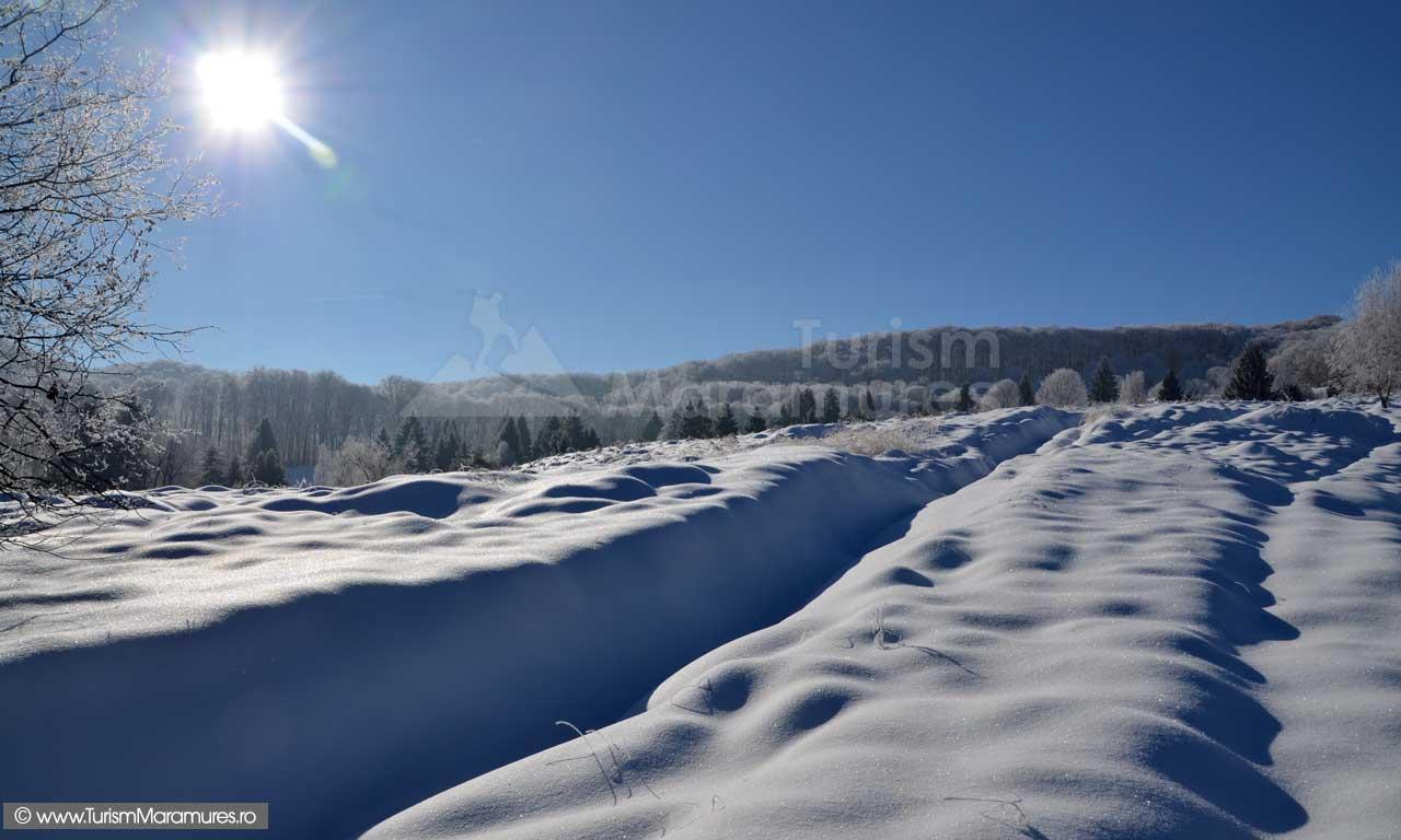 Iarna-Muntii-Ignis-Maramures_00