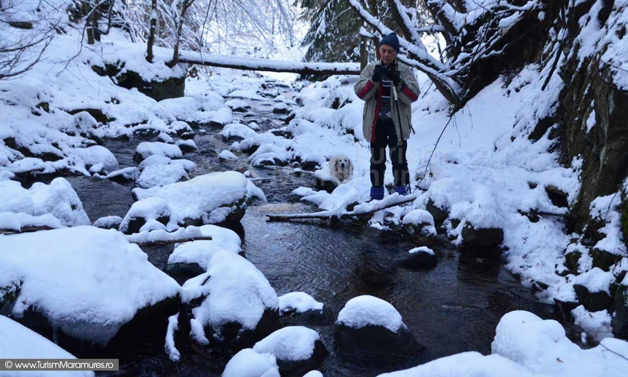 Aval de Cascada Blidari