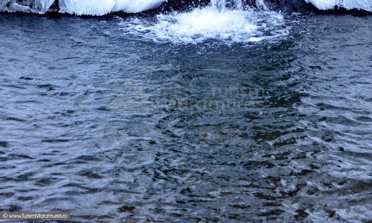 Bulboana cascada valea Sturului Maramures