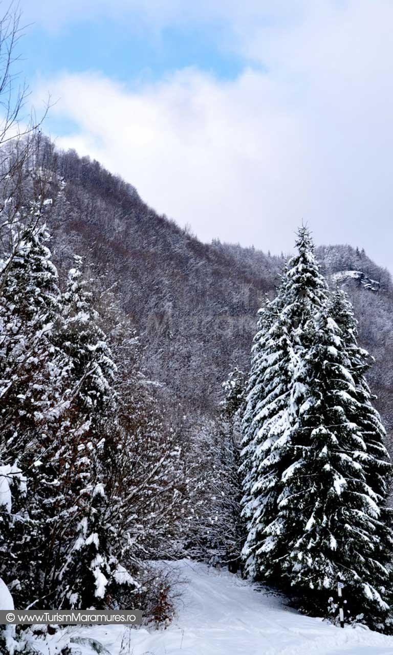 Iarna Maramures_01