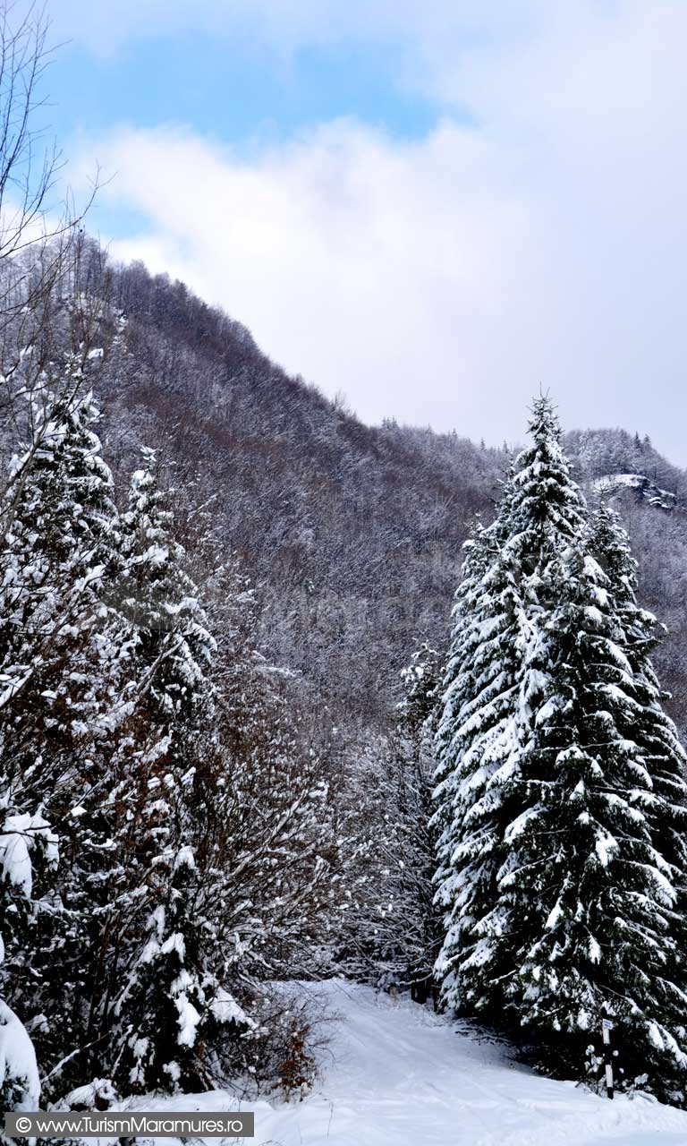 Imagini-de-iarna-Maramure_01