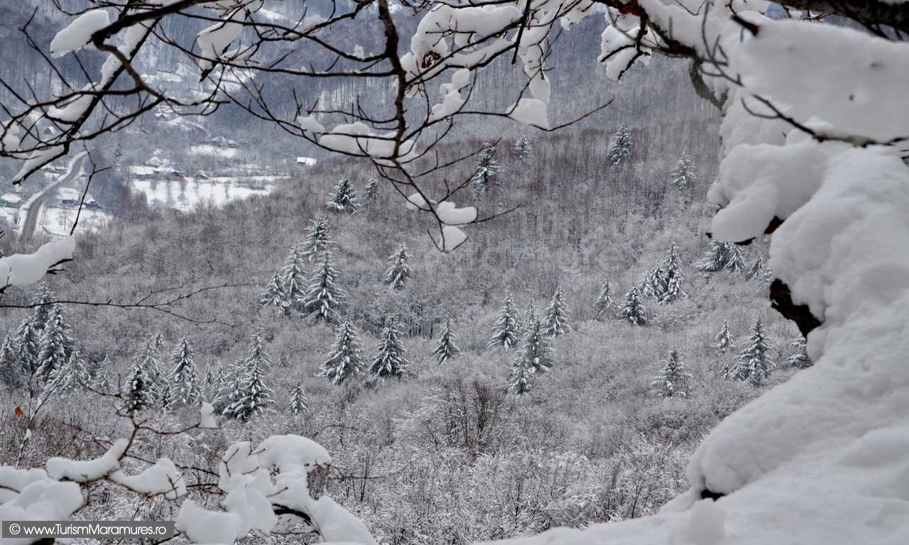 Imagini-de-iarna-Maramures