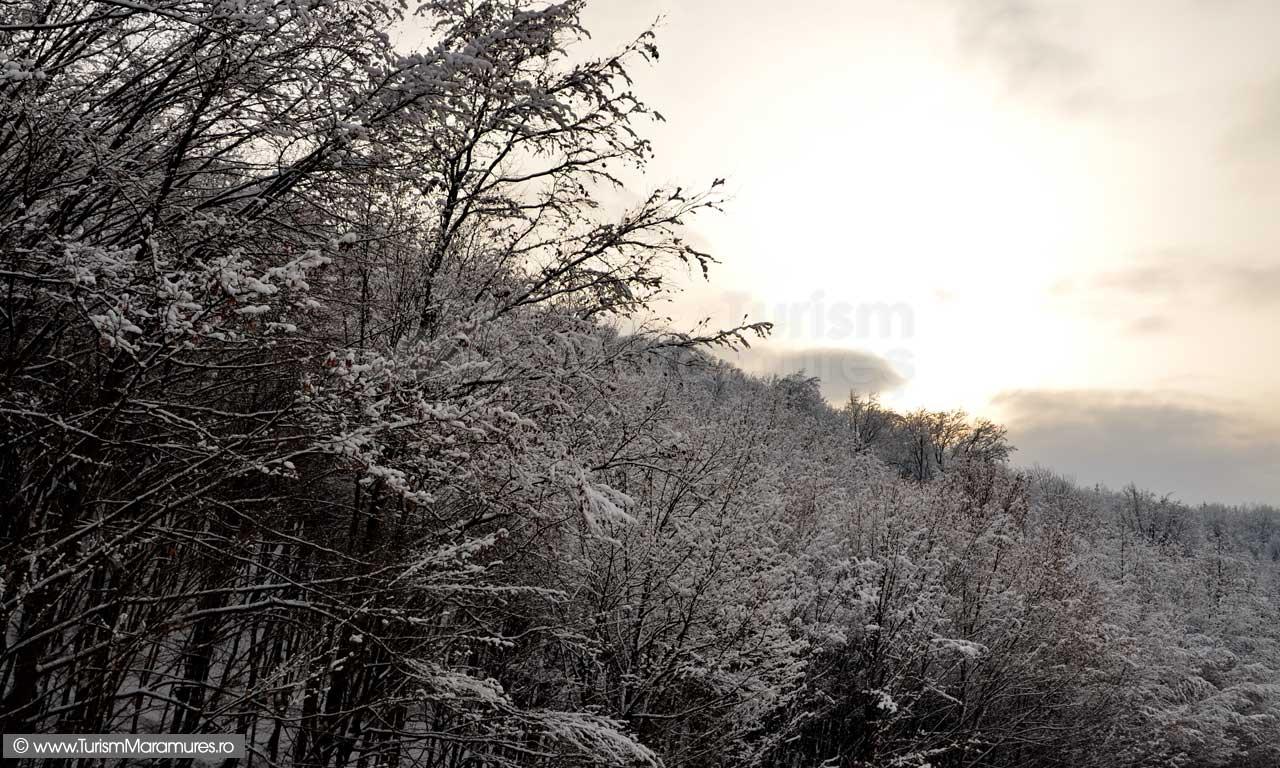 Imagini-de-iarna-Maramures_04