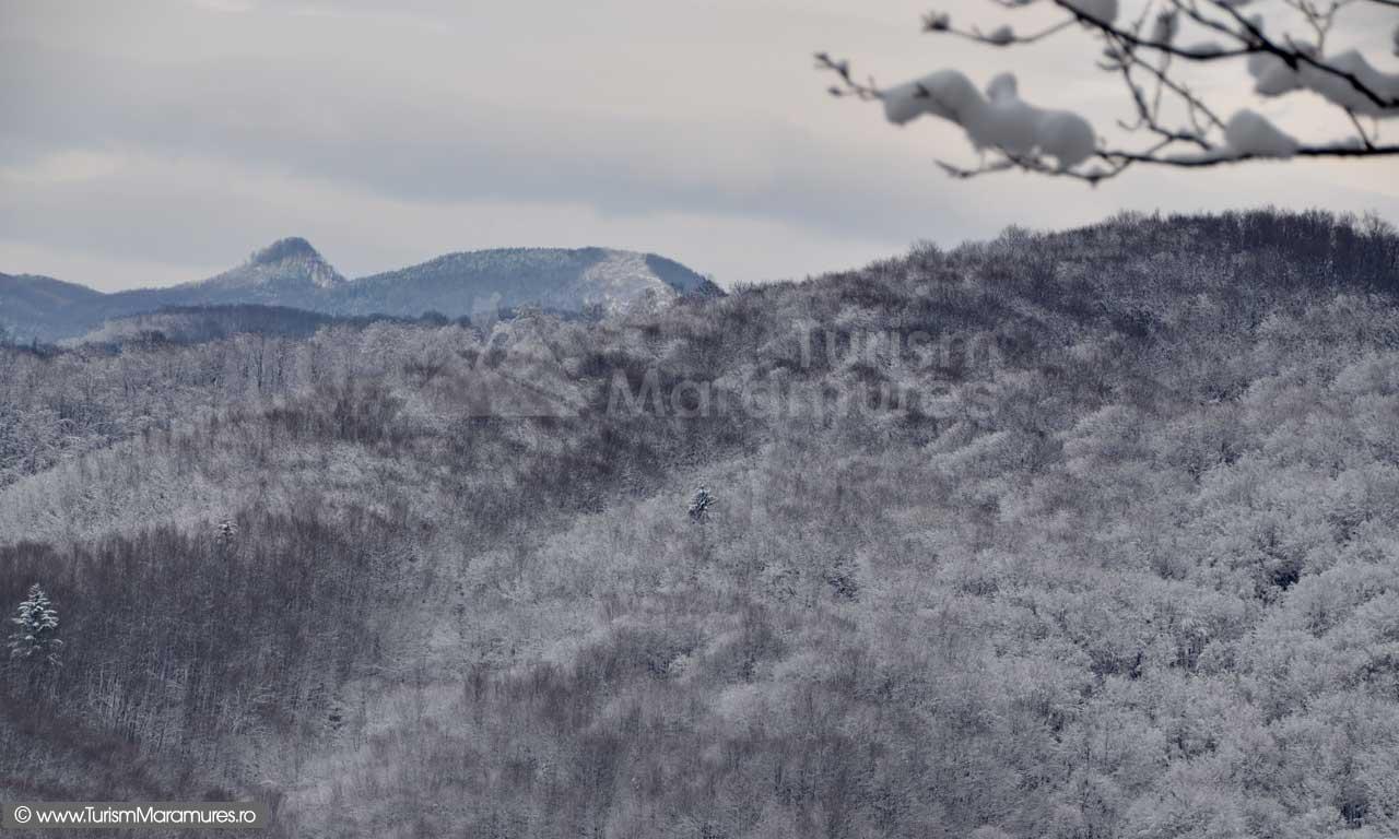 Piatra-Tisei_Magura-Mare