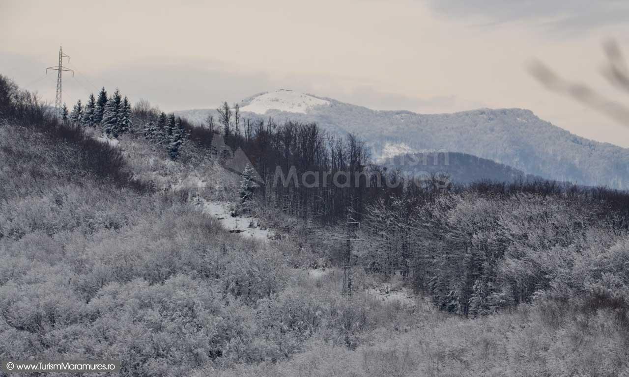 Pietroasa_varful-Tiganu