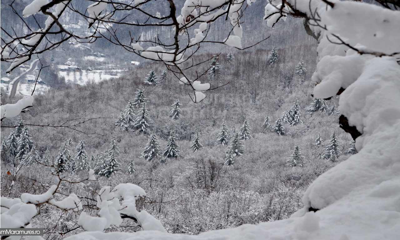 Iarna Maramures_02