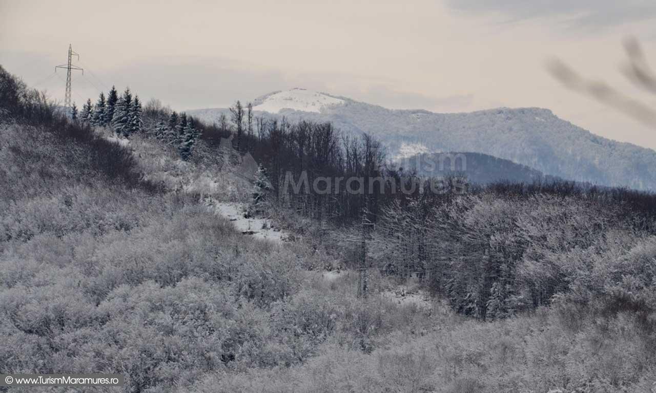 Pietroasa_Tiganu_ Maramures