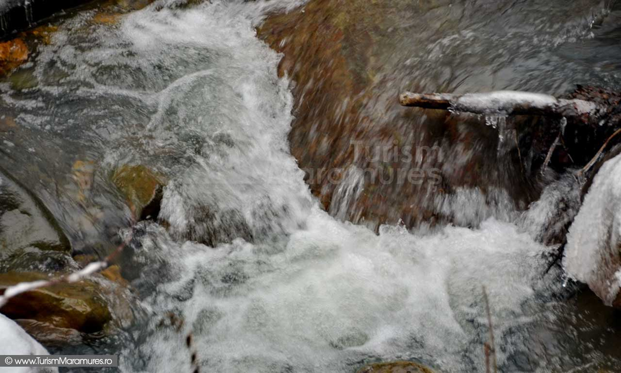 Valea Nistru Maramures_02